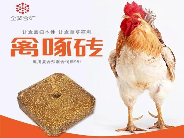 禽啄砖优势在哪里?能改变什么?